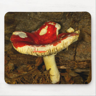Red Mushroom Mouse Pad