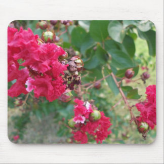 Red Myrtle Abstract Mouse Pad