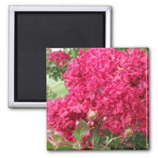 Red Myrtle Merchandise 2 Inch Square Magnet