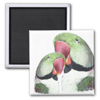 Red Neck Parakeet Products Magnet