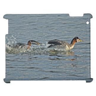 Red-necked Grebe Fight Wildlife Birdlovers Photo iPad Covers