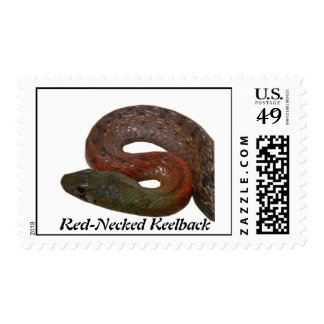 Red-Necked Keelback Postage Stamps