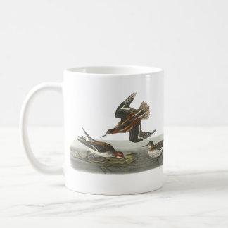 Red-necked Phalarope, John Audubon Coffee Mugs