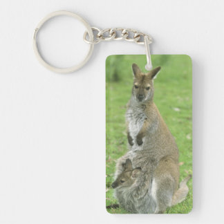 Red-necked Wallaby, Macropus rufogriseus), Keychain