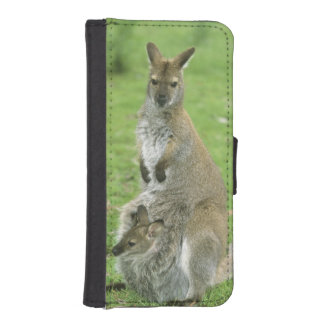 Red-necked Wallaby, Macropus rufogriseus), Wallet Phone Case For iPhone SE/5/5s
