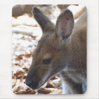 Red-necked Wallaby Mousepad
