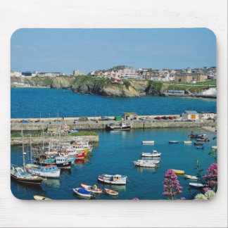 Red Newquay harbor, Cornwall, U.K. flowers Mouse Pad