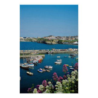 Red Newquay harbor, Cornwall, U.K. flowers Poster