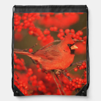 Red Northern Cardinal Male, IL Drawstring Backpack