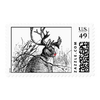 red nosed jackalope postage stamp