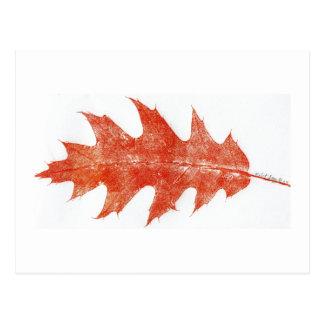 """Red Oak Leaf #2"" Country Roads Postcard"