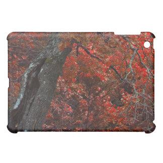 Red Oak photo iPad case