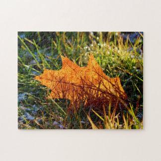 Red Oak Tree Leaf Jigsaw Puzzle