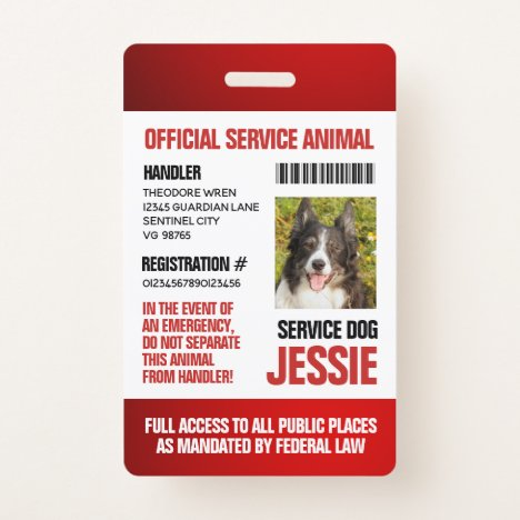 Red Official Service Animal Custom Photo ID Badge