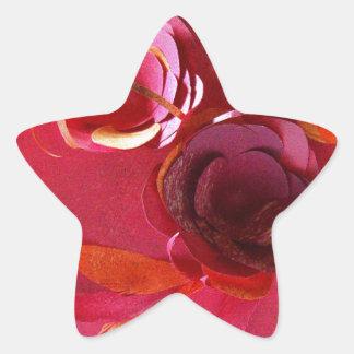 Red on Red by Robert E Meisinger 2014 Star Sticker