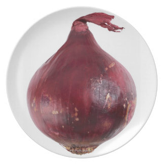 Red onion  isolated on white background, DFF Dinner Plate