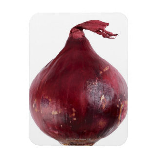 Red onion  isolated on white background, DFF Rectangle Magnet