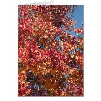 Red & Orange Autumn blank card