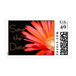 Red Orange Gerbera Daisy Save the Date Postage