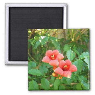 Red-Orange Horn Vine Flower Magnet