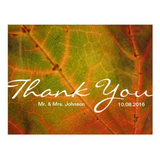 Red-Orange Leaf Thank You Postcard