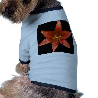 Red Orange Lily Dog Clothing
