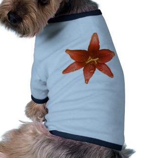 Red Orange Lily Pet T Shirt