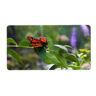 Red Orange Monarch Butterfly Danaus plexippus Label