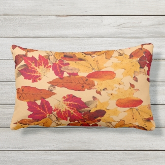 Red Orange Yellow Brown Autumn Leaves