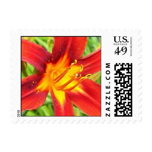 Red Orange Yellow Lily Flower Postage II