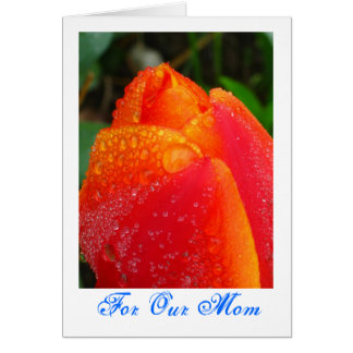 Red OrangeTulip Mother's Day card