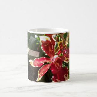 Red Orchid 11 oz Mug