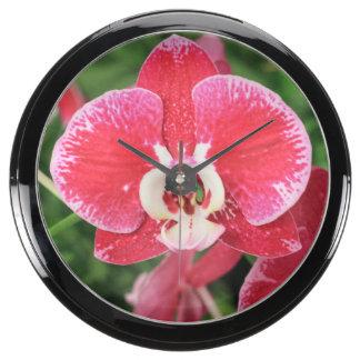Red Orchid bloosom Fish Tank Clocks