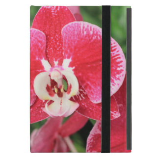 Red Orchid bloosom iPad Mini Cover