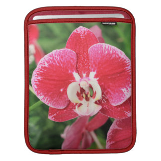Red Orchid bloosom iPad Sleeves