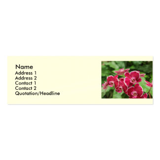 Red Orchid blossom Business Card Template
