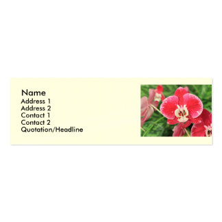 Red Orchid blossom Business Card