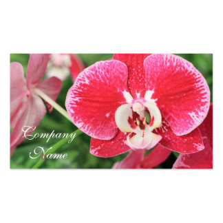 Red Orchid blossom Business Cards