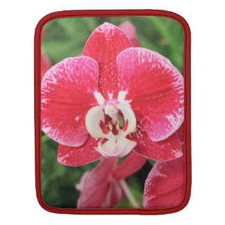 Red Orchid blossom iPad Sleeves