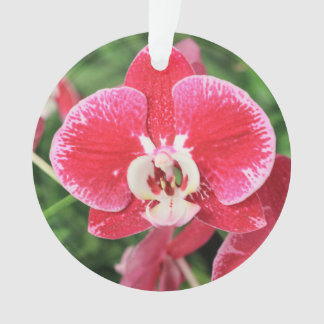 Red Orchid blossom Ornament