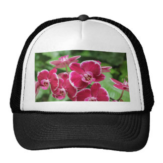 Red Orchid blossom Trucker Hat