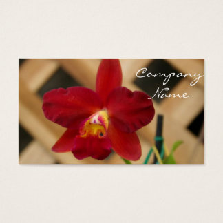 Red Orchid Business cards