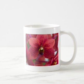 Red Orchid Classic White Coffee Mug