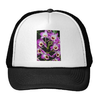Red Orchid dendrobium-noble-hybrid flowers Mesh Hats
