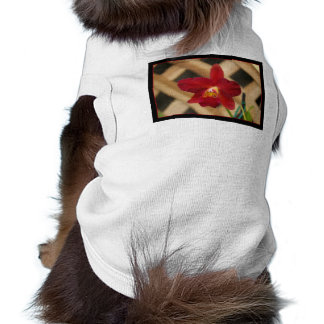Red Orchid dog shirt