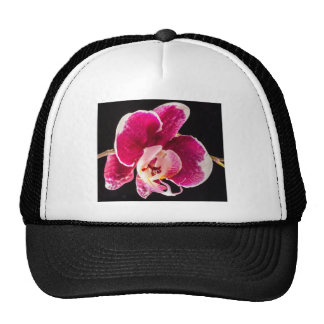 Red Orchid Flower Mesh Hats