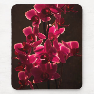 Red Orchid Flower Mousepad