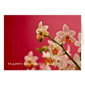 Red Orchid • Happy Mother's Day Card