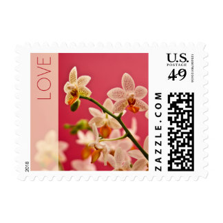 Red Orchid • Love Stamp