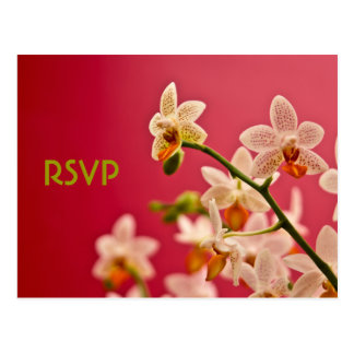 Red Orchid • RSVP Postcard - Customized